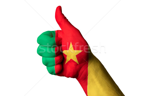 cameroon national flag thumb up gesture for excellence and achie Stock photo © vepar5