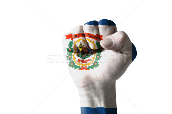 Fist painted in colors of us state of west virginia flag Stock photo © vepar5