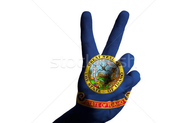 Idaho bayrak iki parmak yukarı jest Stok fotoğraf © vepar5