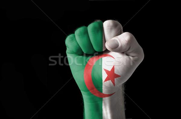 Puno pintado colores Argelia bandera bajo Foto stock © vepar5
