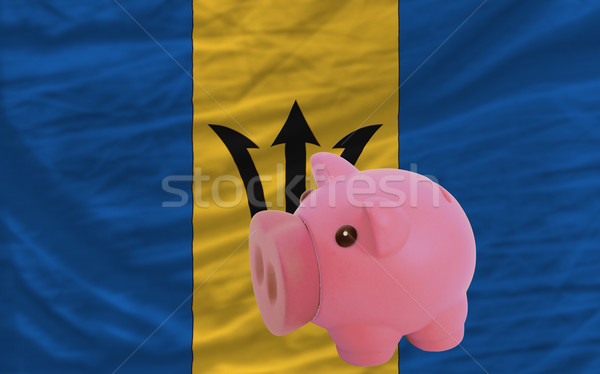 piggy rich bank and  national flag of barbados    Stock photo © vepar5