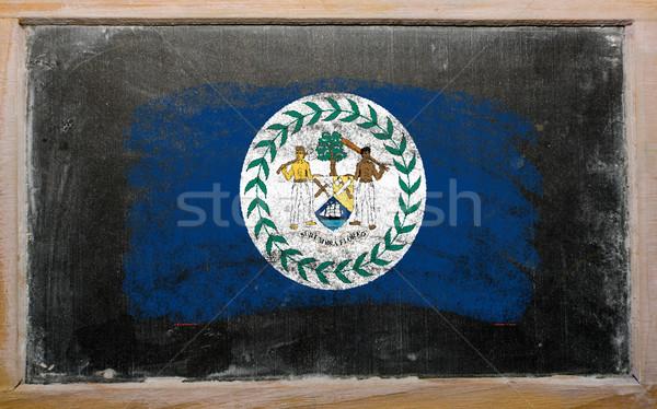 флаг Белиз доске окрашенный мелом цвета Сток-фото © vepar5