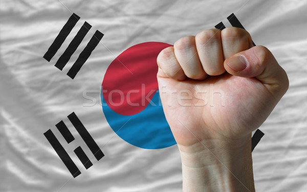 Hard fist in front of south korea flag symbolizing power Stock photo © vepar5