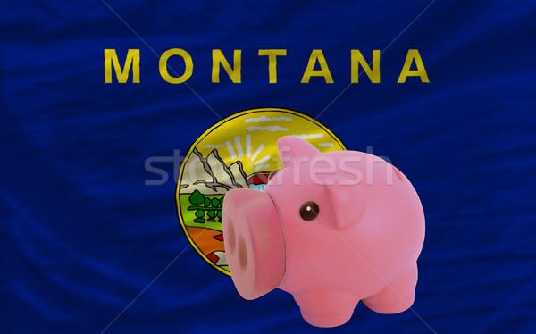 Malac gazdag bank zászló amerikai Montana Stock fotó © vepar5