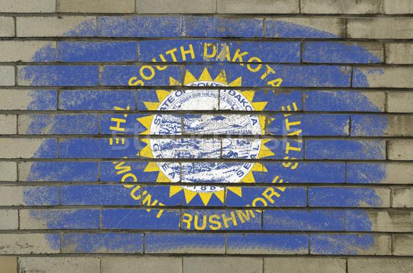 Grunge vlag South Dakota muur geschilderd amerikaanse Stockfoto © vepar5