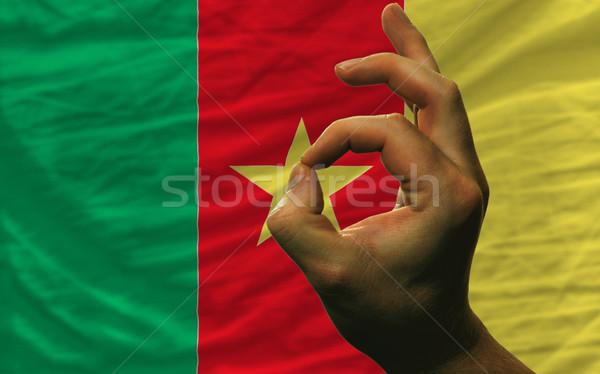 вызывать жест Камерун флаг человека Сток-фото © vepar5