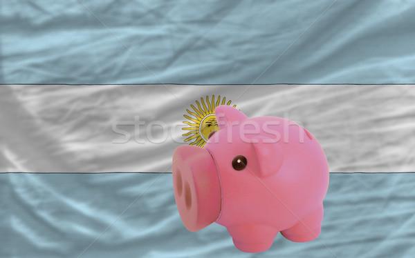 Rijke bank vlag Argentinië besparing Stockfoto © vepar5