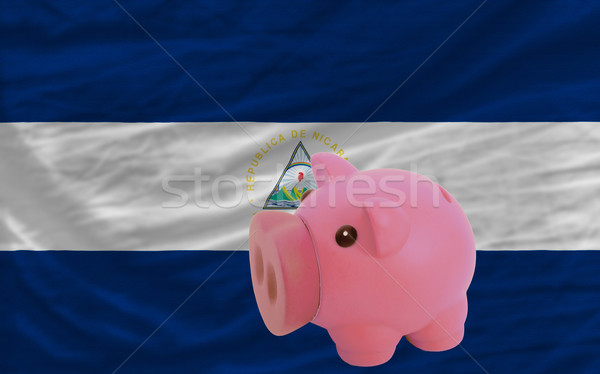 piggy rich bank and  national flag of nicaragua    Stock photo © vepar5