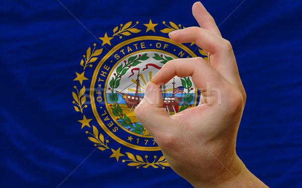 Gebaar New Hampshire vlag man tonen Stockfoto © vepar5