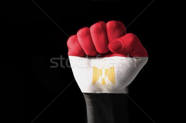 Fist painted in colors of egypt flag Stock photo © vepar5