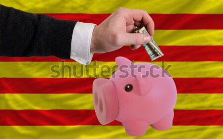 piggy rich bank and  national flag of germany    Stock photo © vepar5