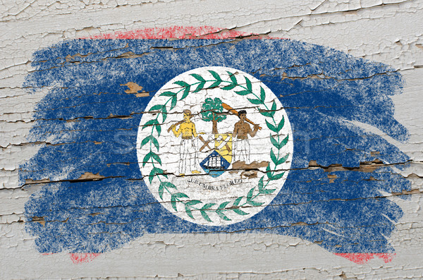 Zászló Belize grunge fából készült textúra festett Stock fotó © vepar5