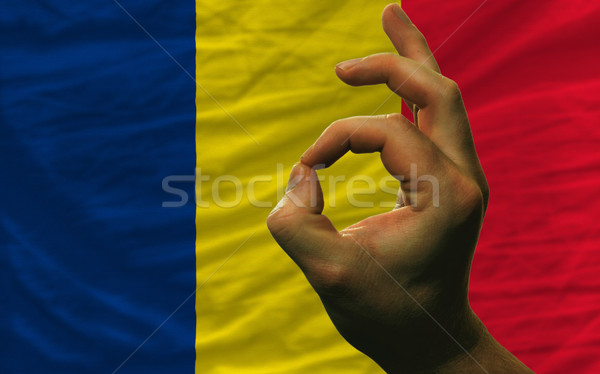 ok gesture in front of chad national flag Stock photo © vepar5