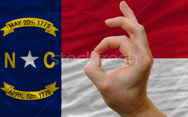 ok gesture in front of north carolina us state flag Stock photo © vepar5