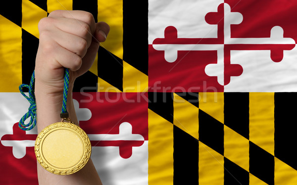 спорт флаг американский Мэриленд победителем Сток-фото © vepar5