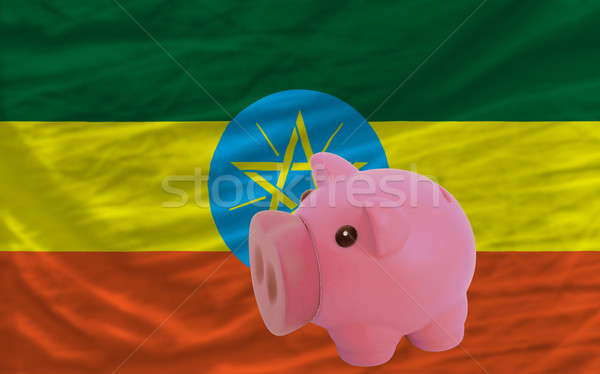 piggy rich bank and  national flag of ethiopia    Stock photo © vepar5