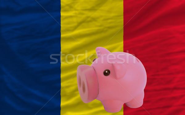 Bogate banku banderą Chad oszczędność Zdjęcia stock © vepar5