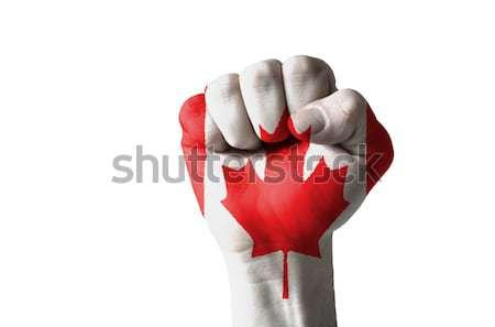 Pięść malowany kolory Kanada banderą niski Zdjęcia stock © vepar5