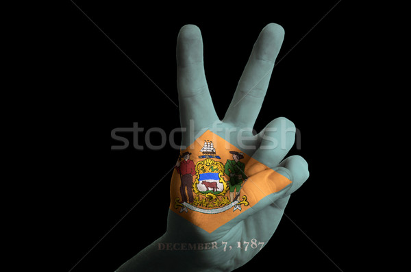 delaware us state flag two finger up gesture for victory and win Stock photo © vepar5