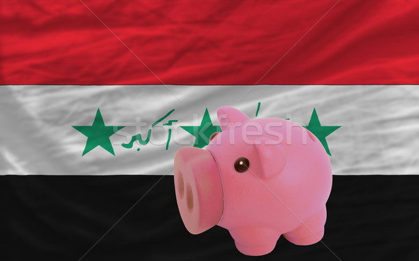Zengin banka bayrak Irak Stok fotoğraf © vepar5