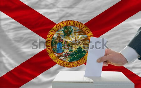 complete waved flag of american state of florida for background  Stock photo © vepar5