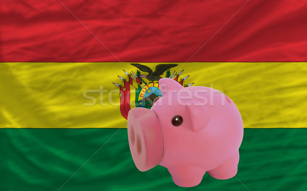 piggy rich bank and  national flag of bolivia    Stock photo © vepar5
