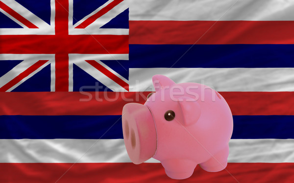 piggy rich bank and  flag of american state of hawaii    Stock photo © vepar5