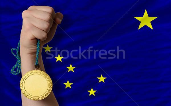 Médaille d'or sport pavillon Alaska gagnant Photo stock © vepar5