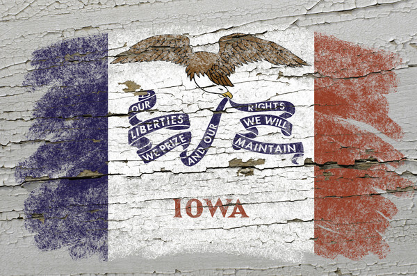 flag of US state of iowa on grunge wooden texture precise painte Stock photo © vepar5