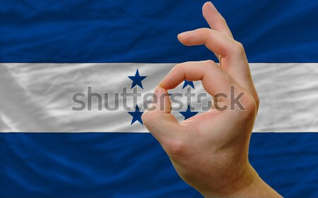 Heart and love gesture showed by hands over flag of honduras bac Stock photo © vepar5