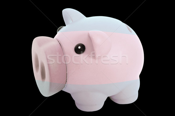 piggy rich bank in colors national flag of argentina   for savin Stock photo © vepar5