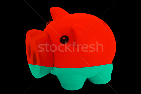 piggy rich bank in colors national flag of belarus   for saving  Stock photo © vepar5