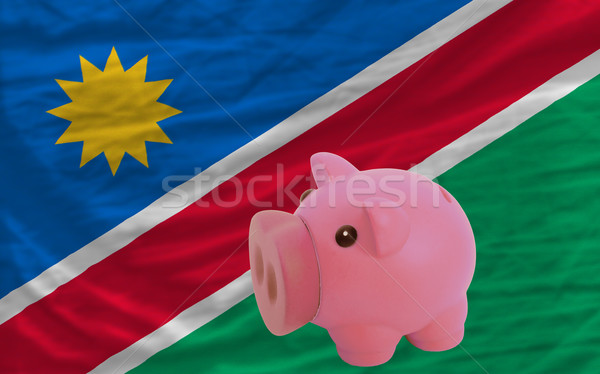 piggy rich bank and  national flag of namibia    Stock photo © vepar5