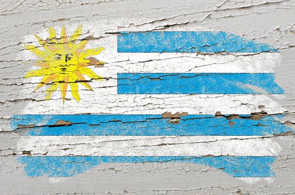 Zászló Uruguay grunge fából készült textúra festett Stock fotó © vepar5