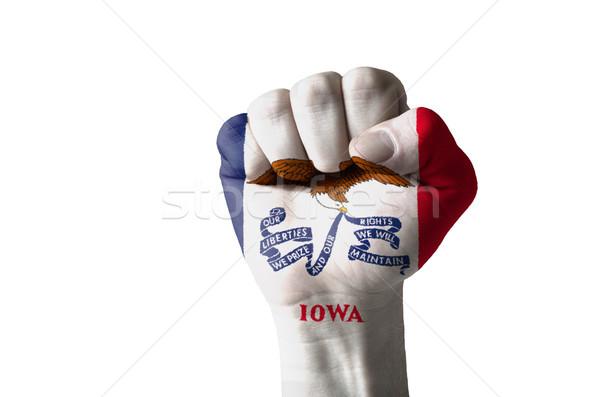 ököl festett színek Iowa zászló alacsony Stock fotó © vepar5