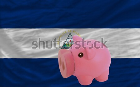 piggy rich bank and  national flag of guatemala    Stock photo © vepar5