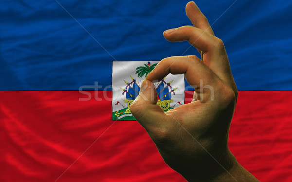 Gebaar Haïti vlag man tonen Stockfoto © vepar5