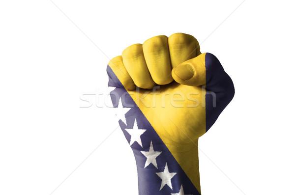Puno pintado colores Bosnia Herzegovina bandera bajo Foto stock © vepar5
