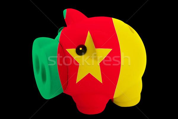 Rijke bank kleuren vlag Kameroen Stockfoto © vepar5