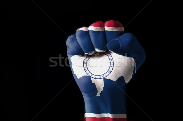 Fist painted in colors of us state of wyoming flag Stock photo © vepar5