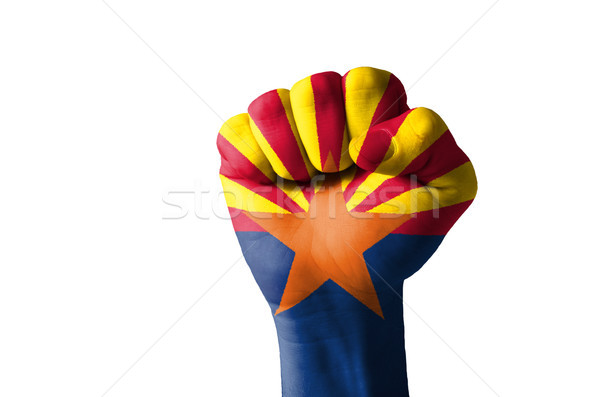 Fist painted in colors of us state of arizona flag Stock photo © vepar5