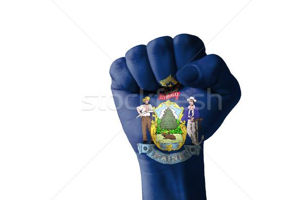 Stock fotó: ököl · festett · színek · Maine · zászló · alacsony