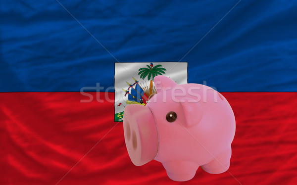 Zengin banka bayrak Haiti Stok fotoğraf © vepar5