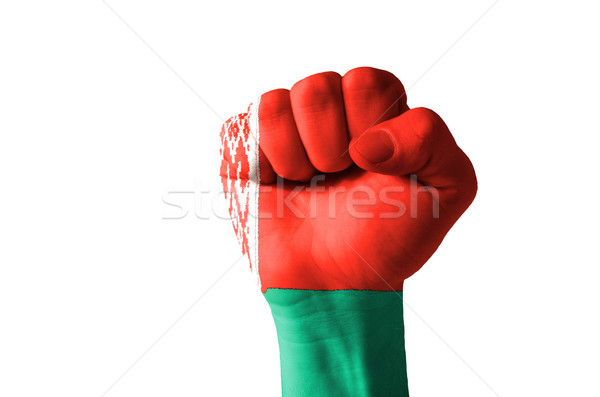 Fist painted in colors of belarus flag Stock photo © vepar5