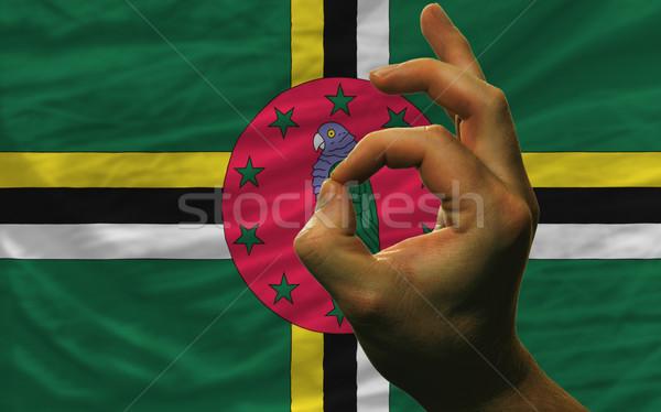 Gebaar Dominica vlag man tonen Stockfoto © vepar5