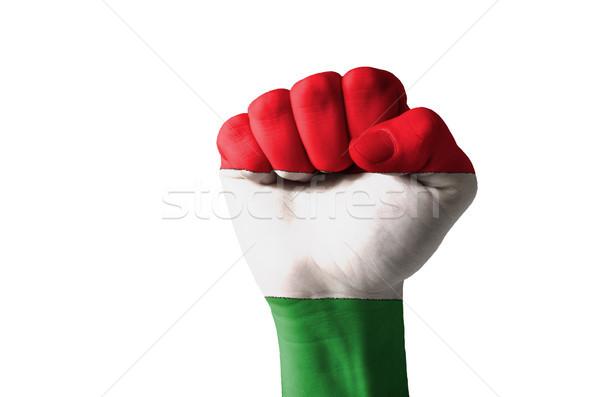 ököl festett színek Magyarország zászló alacsony Stock fotó © vepar5