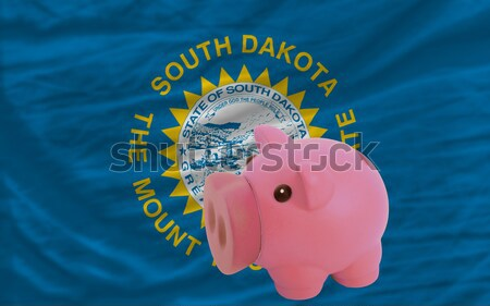 piggy rich bank and  flag of american state of kentucky    Stock photo © vepar5