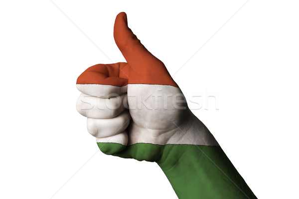 hungary national flag thumb up gesture for excellence and achiev Stock photo © vepar5