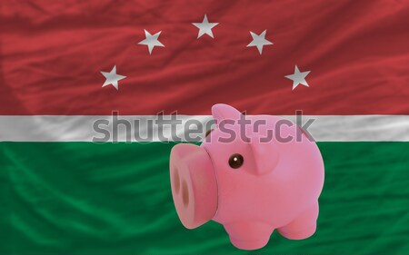 piggy rich bank and  national flag of  of basque    Stock photo © vepar5
