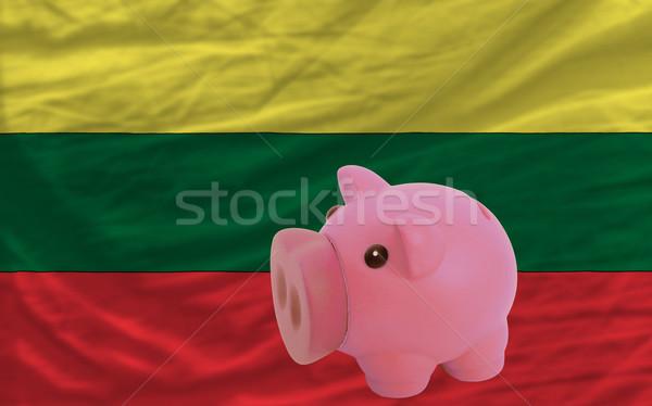 богатых банка флаг Литва Сток-фото © vepar5